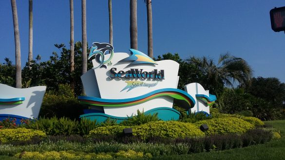 FLORIDA ON THE ROAD: ORLANDO E SEA WORLD