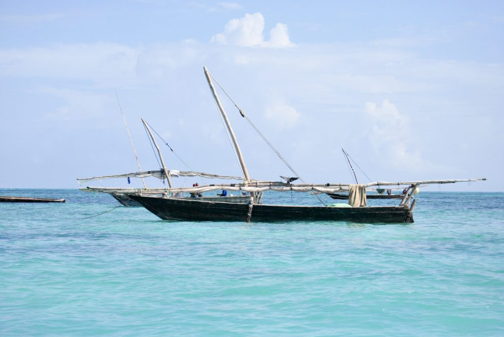 Escursioni a Zanzibar, dahw