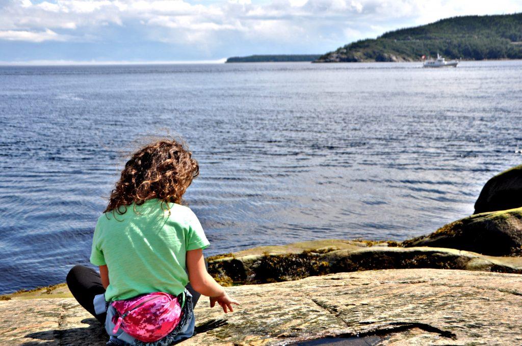 Vedere le balene a Tadoussac Canada