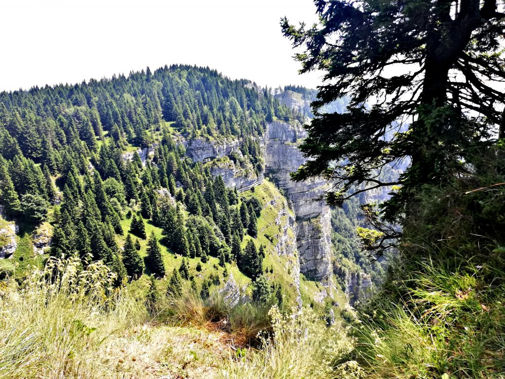 Forte campolongo, vista dal sentiero