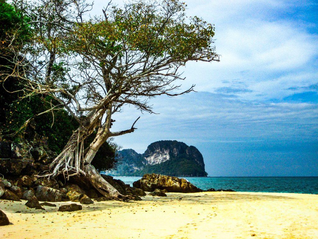 Phi phi island long Beach