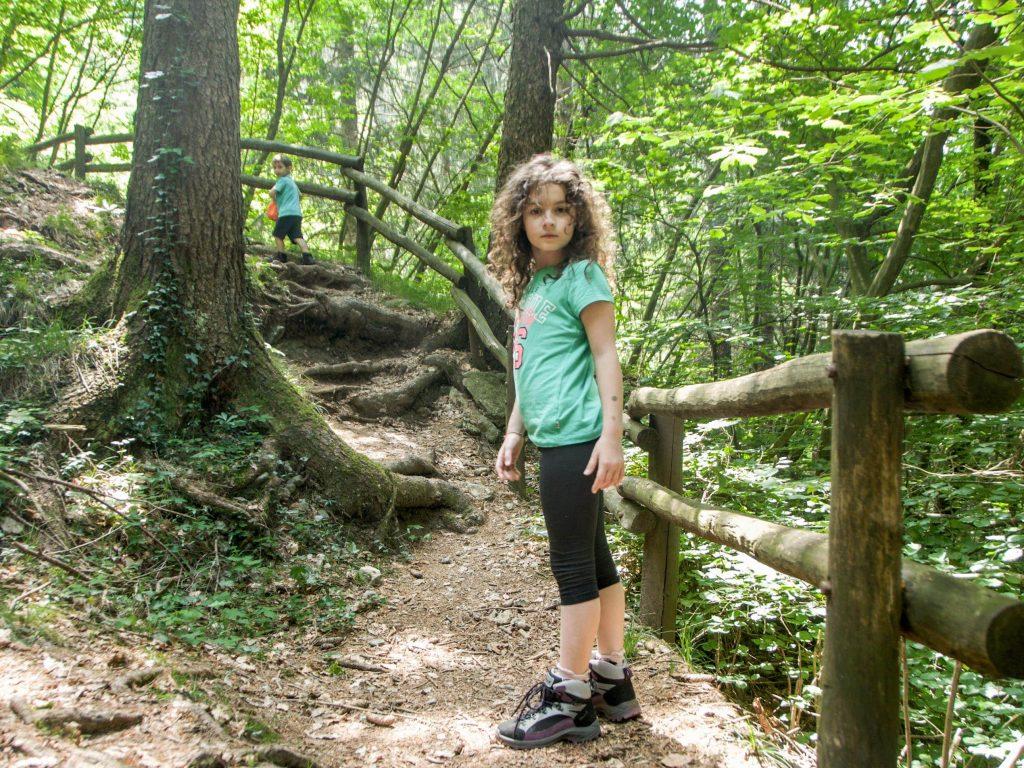 sentiero bosco gnomi